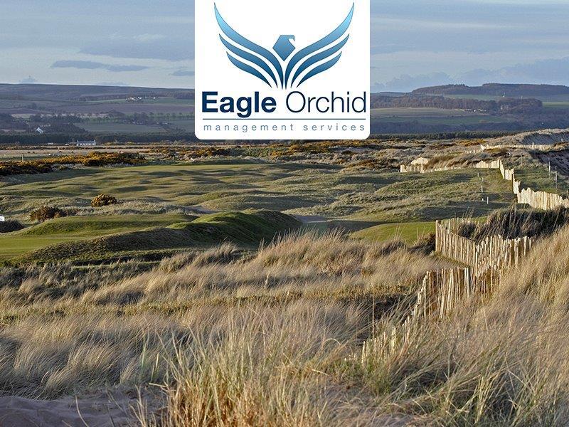 Eagle Orchid Scottish Masters